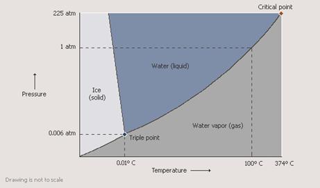 Which Liquid Has The Highest Vapor Pressure At Room Temperature